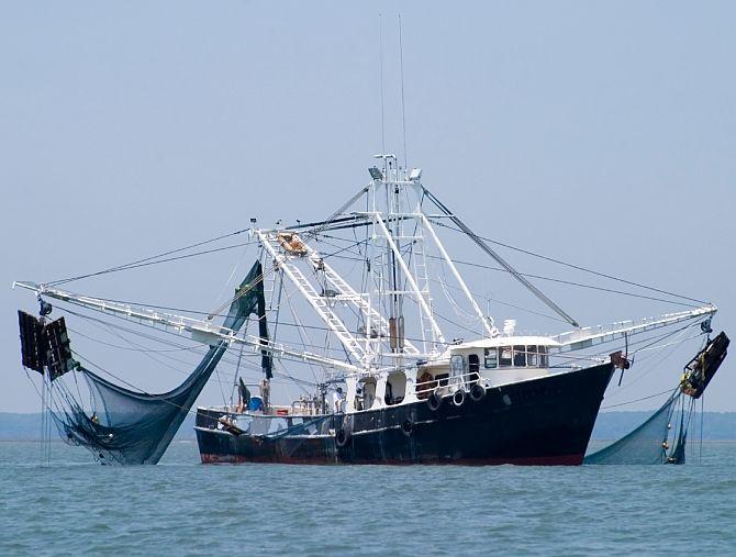 Поздравление с Всемирным днём рыболовства